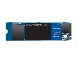 WDS250G2B0C -